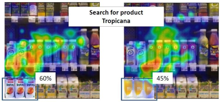 search for tropicana